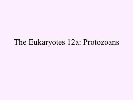 The Eukaryotes 12a: Protozoans. Eukaryotes in general cells chromosomes made of chromatin cell division: mitosis & cytokinesis (if) sexual reproduction.