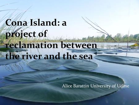 Cona Island: a project of reclamation between the river and the sea Alice Barattin University of Udine.