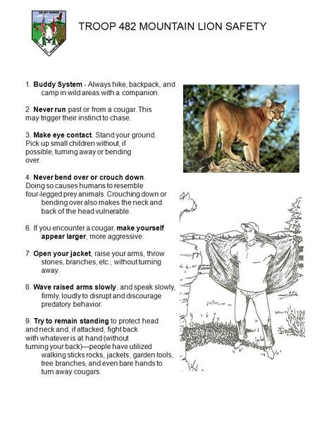 TROOP 482 MOUNTAIN LION SAFETY 1. Buddy System - Always hike, backpack, and camp in wild areas with a companion. 2. Never run past or from a cougar. This.