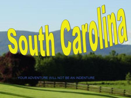 YOUR ADVENTURE WILL NOT BE AN INDENTURE. Colony of South Carolina.
