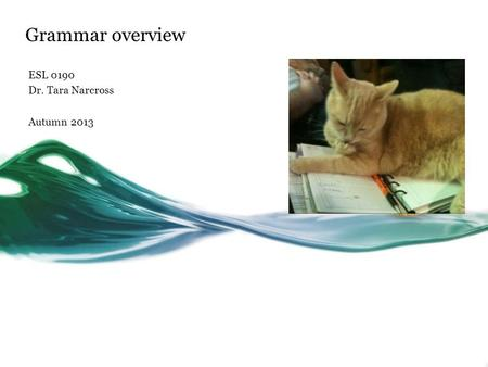 Grammar overview ESL 0190 Dr. Tara Narcross Autumn 2013.