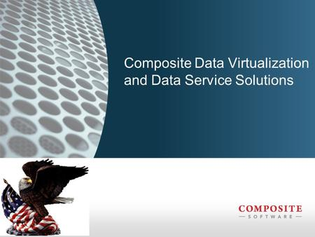 Composite Data Virtualization and Data Service Solutions.