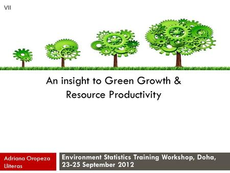 An insight to Green Growth & Resource Productivity Environment Statistics Training Workshop, Doha, 23-25 September 2012 Adriana Oropeza Lliteras VII.