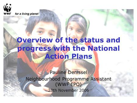 Overview of the status and progress with the National Action Plans Pauline Denissel Neighbourhood Programme Assistant (WWF EPO) 28th November 2006.