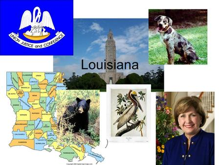 "Louisiana. Flag In the flag there is a group of pelicans It is white and gold (the flag) It also has the state motto ""Union, Justice, and Confidence"""