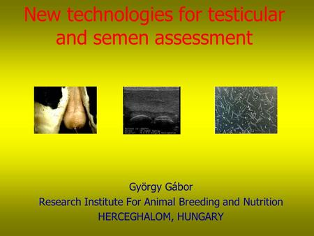 New technologies for testicular and semen assessment