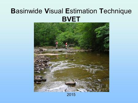 Basinwide Visual Estimation Technique BVET 2015. What is BVET? Stream habitat inventory method –Hankin and Reeves (1988) –Dolloff et al. (1993) A two-stage.