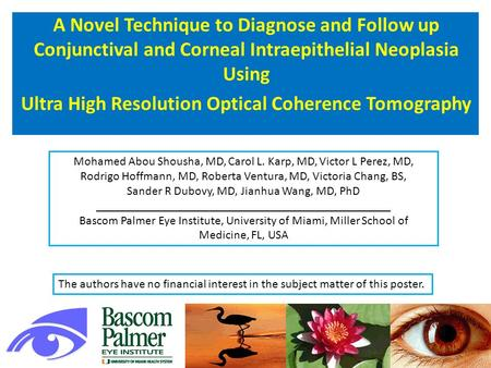 A Novel Technique to Diagnose and Follow up Conjunctival and Corneal Intraepithelial Neoplasia Using Ultra High Resolution Optical Coherence Tomography.