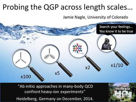 Ab initio approaches in many-body QCD confront heavy-ion experiments Heidelberg, Germany on December, 2014. Probing the QGP across length scales… Jamie.