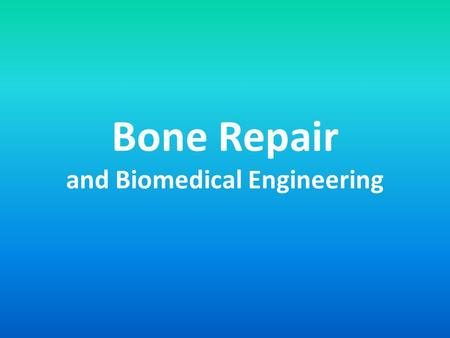 Bone Repair and Biomedical Engineering. Repairing Bones: Overview Some serious breaks need the aid of engineers because: – Need to restore function and.