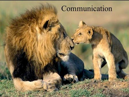 Communication. Definition Action on the part of one organism that alters the probability pattern of behaviour of another organism in a way that may or.