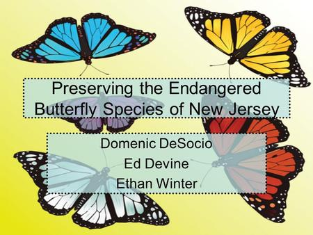 Preserving the Endangered Butterfly Species of New Jersey Domenic DeSocio Ed Devine Ethan Winter.