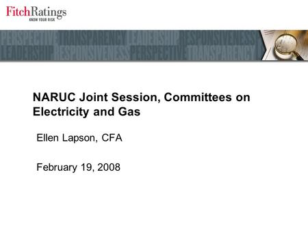 NARUC Joint Session, Committees on Electricity and Gas Ellen Lapson, CFA February 19, 2008.