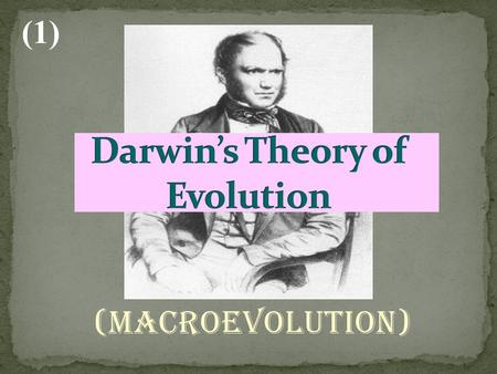 (Macroevolution) (1). Developed the theory of evolution by observing animals on the Galapagos Islands Wrote a book Origin of Species to describe his theory.