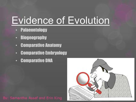 Evidence of Evolution Palaeontology Biogeography Comparative Anatomy Comparative Embryology Comparative DNA By: Samantha Assaf and Erin King.