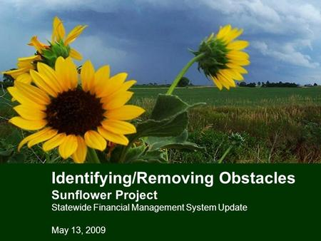 Identifying/Removing Obstacles Sunflower Project Statewide Financial Management System Update May 13, 2009.