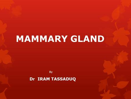 MAMMARY GLAND By Dr IRAM TASSADUQ. INTRODUCTION  Mammary Glands exist in both sexes.  Rudimentary in males throughout life  Start developing at puberty.