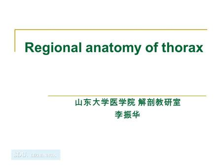Regional anatomy of thorax