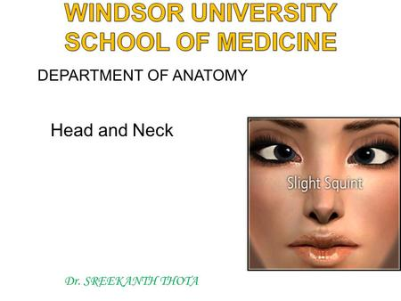 Head and Neck Dr. SREEKANTH THOTA DEPARTMENT OF ANATOMY.