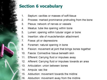 Section 6 vocabulary 1.Septum: cavities or masses of soft tissue 2.Process: marked prominance protruding from the bone 3.Plexus: network of nerves or vessels.