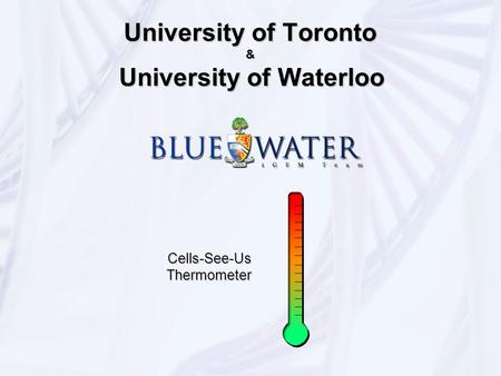 University of Toronto & University of Waterloo Cells-See-Us Thermometer.
