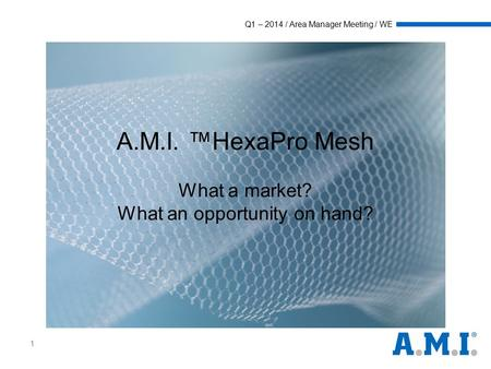 Q1 – 2014 / Area Manager Meeting / WE 1 A.M.I. ™HexaPro Mesh What a market? What an opportunity on hand?