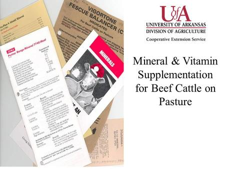 Mineral & Vitamin Supplementation for Beef Cattle on Pasture.