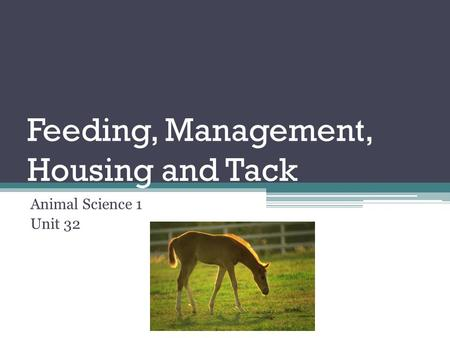 Feeding, Management, Housing and Tack Animal Science 1 Unit 32.