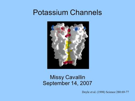 Doyle et al. (1998) Science 280:69-77 Missy Cavallin September 14, 2007 Potassium Channels.