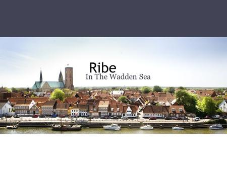 Ribe In The Wadden Sea. Peter's Christmas Experience old fashion christmas in Ribe. 1st december! Small plays around the city. Who's Peter?