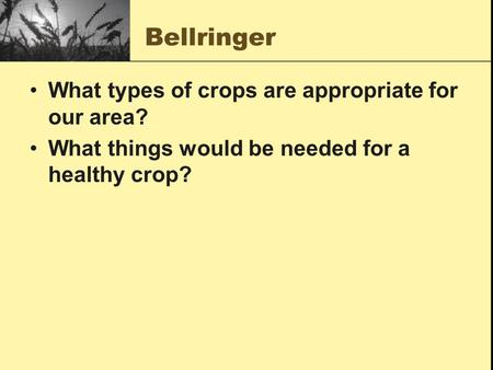 Bellringer What types of crops are appropriate for our area? What things would be needed for a healthy crop?