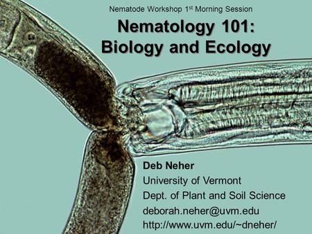 Nematology 101: Biology and Ecology Deb Neher University of Vermont Dept. of Plant and Soil Science  Nematode.