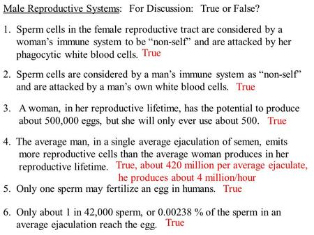 "Male Reproductive Systems: For Discussion: True or False? 2. Sperm cells are considered by a man's immune system as ""non-self"" and are attacked by a man's."