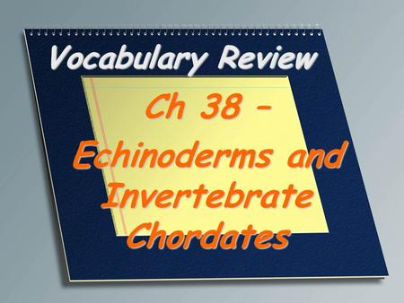 Ch 38 – Echinoderms and Invertebrate Chordates