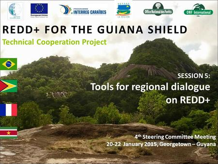 REDD+ FOR THE GUIANA SHIELD Technical Cooperation Project SESSION 5: Tools for regional dialogue on REDD+ 4 th Steering Committee Meeting 20-22 January.