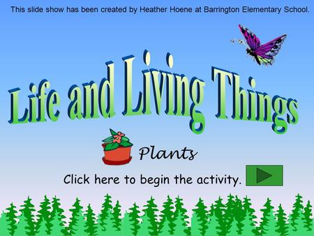 Plants This slide show has been created by Heather Hoene at Barrington Elementary School. Click here to begin the activity.