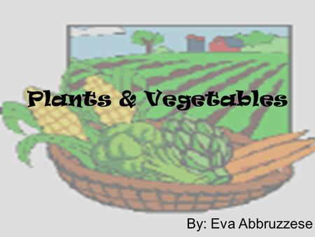 Plants & Vegetables By: Eva Abbruzzese. Why are they important to me? Plants are natural resources from the earth In order to live we have to eat We feed.