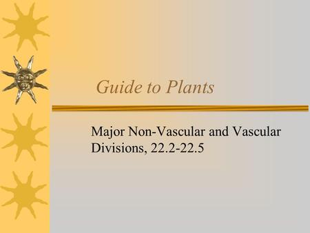 Guide to Plants Major Non-Vascular and Vascular Divisions, 22.2-22.5.