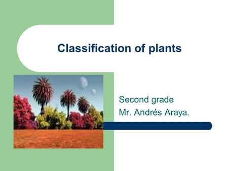 Classification of plants Second grade Mr. Andrés Araya.
