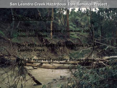 "San Leandro Creek Hazardous Tree Removal Project Project Purpose 1998 ""El Nino"" knocked down over 200 hazardous trees Over 30 reports of property damage."