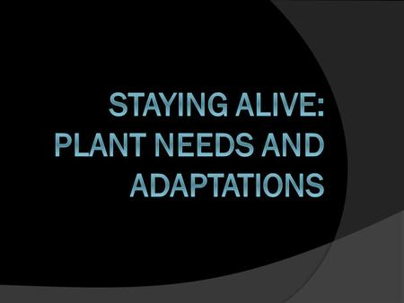 Plant Needs  What do plants need to survive? sunlight water nutrients/minerals energy from food (made by the plant) enough soil to live and grow carbon.