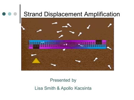 Strand Displacement Amplification Presented by Lisa Smith & Apollo Kacsinta.