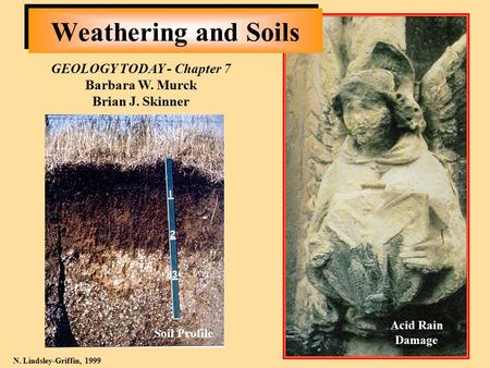 Weathering and Soils GEOLOGY TODAY - Chapter 7 Barbara W. Murck Brian J. Skinner N. Lindsley-Griffin, 1999 Acid Rain Damage Soil Profile.