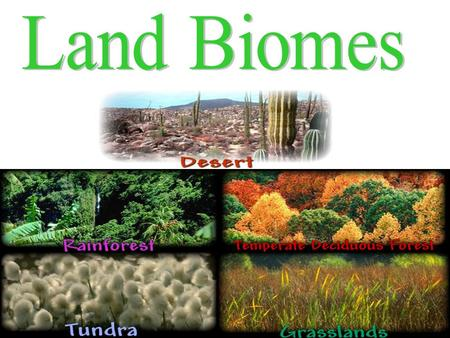What is a Biome? The major terrestrial ecosystems are classified into units called biomes A biome is a large region characterized by certain conditions,