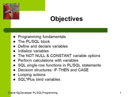 Oracle10g Developer: PL/SQL Programming1 Objectives Programming fundamentals The PL/SQL block Define and declare variables Initialize variables The NOT.