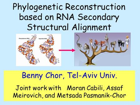 Phylogenetic Reconstruction based on RNA Secondary Structural Alignment Benny Chor, Tel-Aviv Univ. Joint work with Moran Cabili, Assaf Meirovich, and Metsada.