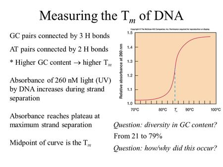 Measuring the T m of DNA GC pairs connected by 3 H bonds AT pairs connected by 2 H bonds * Higher GC content  higher T m Absorbance of 260 nM light (UV)