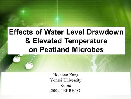 Hojeong Kang Yonsei University Korea 2009 TERRECO Effects of Water Level Drawdown & Elevated Temperature on Peatland Microbes.