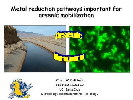 Metal reduction pathways important for arsenic mobilization