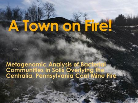 A Town on Fire! Metagenomic Analysis of Bacterial Communities in Soils Overlying the Centralia, Pennsylvania Coal Mine Fire.